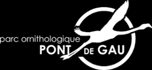 Pont de Gau